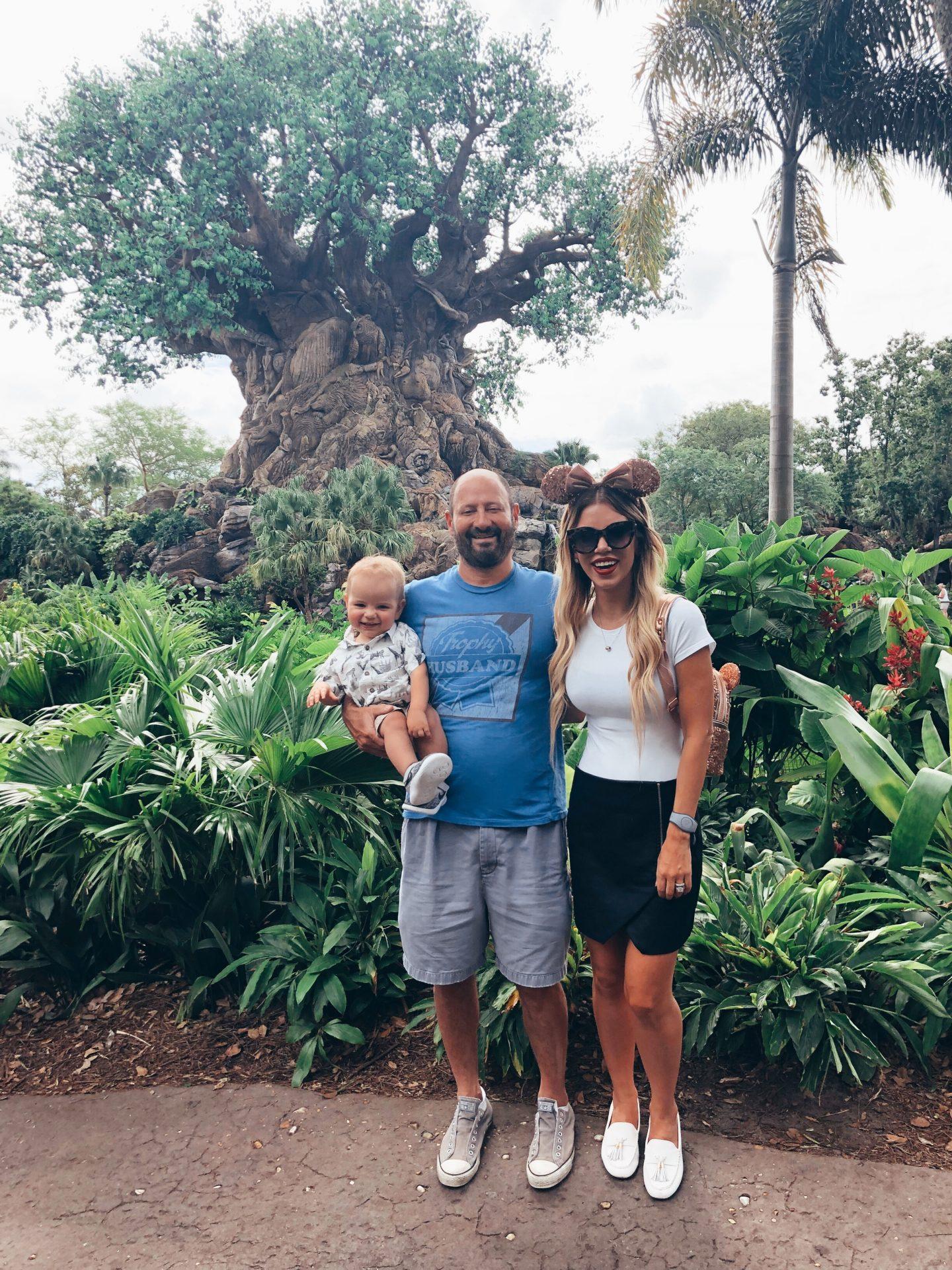 travel blogger, Disney World, Animal Kingdom, Disney blogger